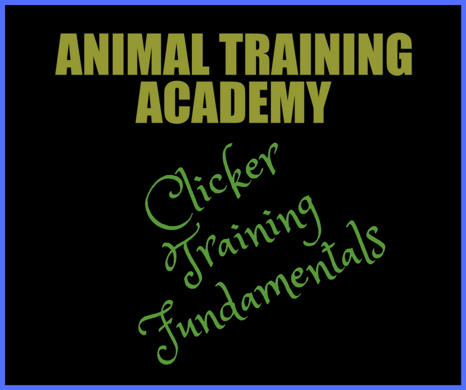 Clicker Training Fundamentals (Course material)