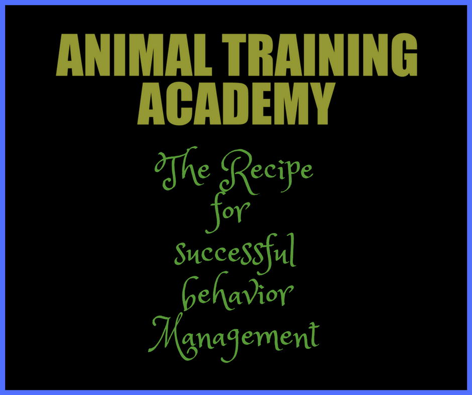 The RECIPE – 6 Ingredients for ethical & effective behavior management (Course)