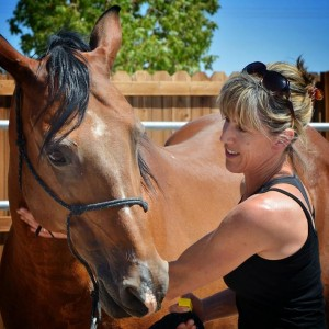 Positive Reinforcement Horse Training – Kate Southcombe – (Episode 7).