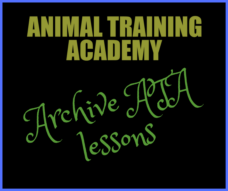 ARCHIVE LESSONS