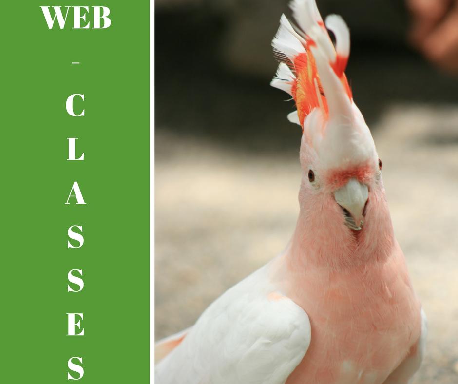 WEB-CLASSES
