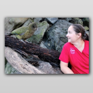 Talking enrichment with Sarah Van Herpt from Wellington Zoo [Part 1]