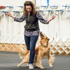 Emma Parsons – Click to calm; Talking aggressive & reactive dogs.