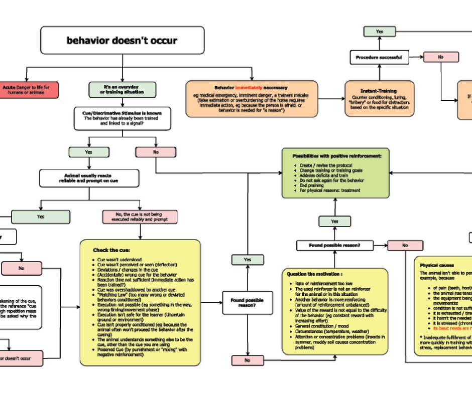 Incorrect responses flow chart – Sylvia Czarnecki (Web-class replay & Mini course)