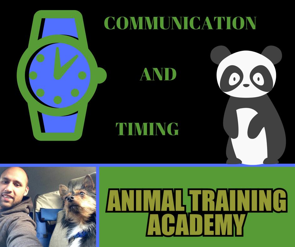 Communication/timing (Web-class replay)