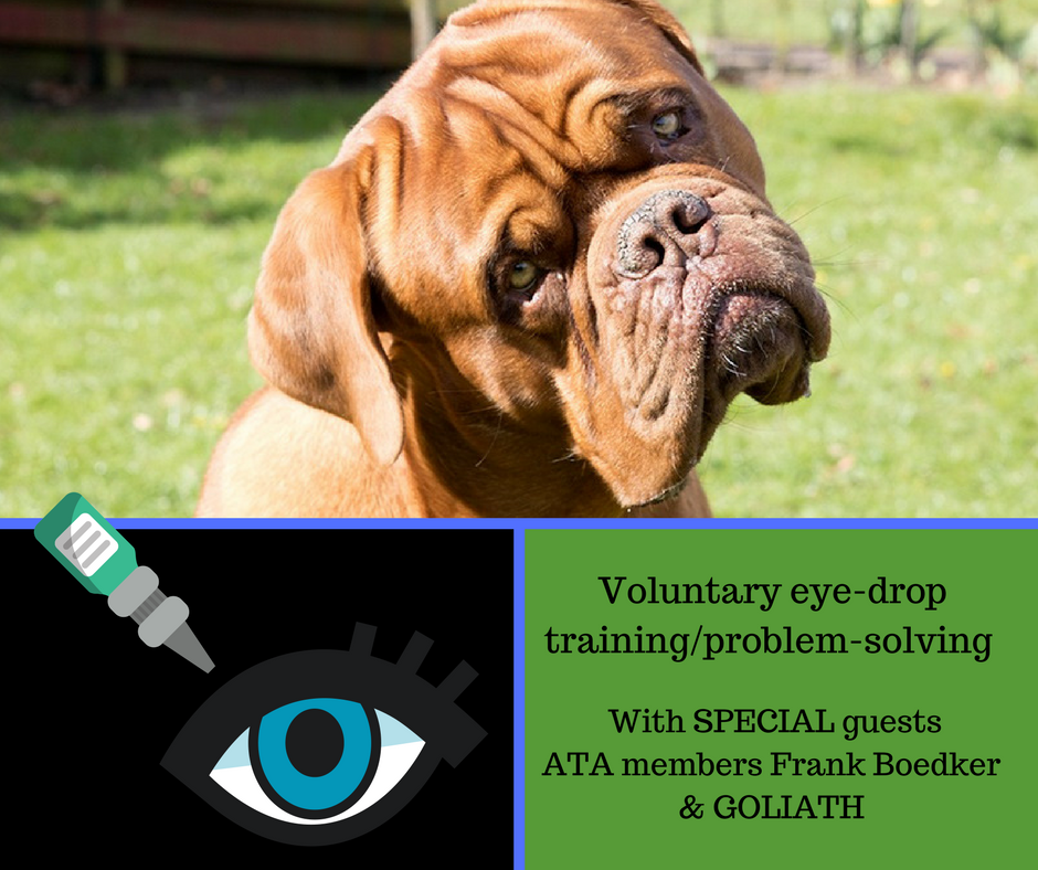Voluntary eye drop training/problem solving (Web-class replay & mini-course)