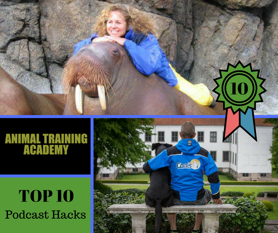 Top 10 podcast hacks of 2017 (Web-class replay)