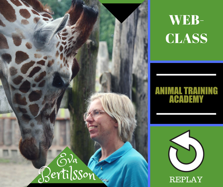 Animal Training Flow-charts with Eva Bertilsson