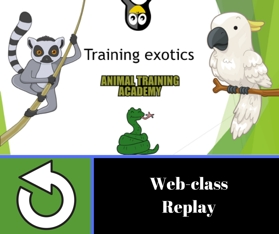 Training exotics [web-class done for Morten Egtvedt's Canis instructors course]