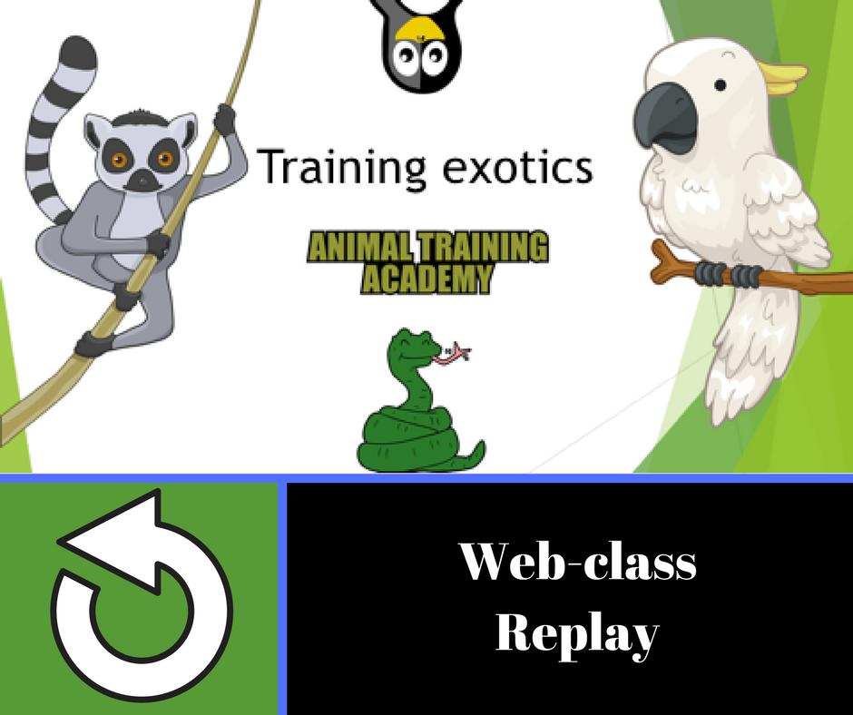 Training exotics [web-class done for Morten Egtvedt's Canis instructors course]