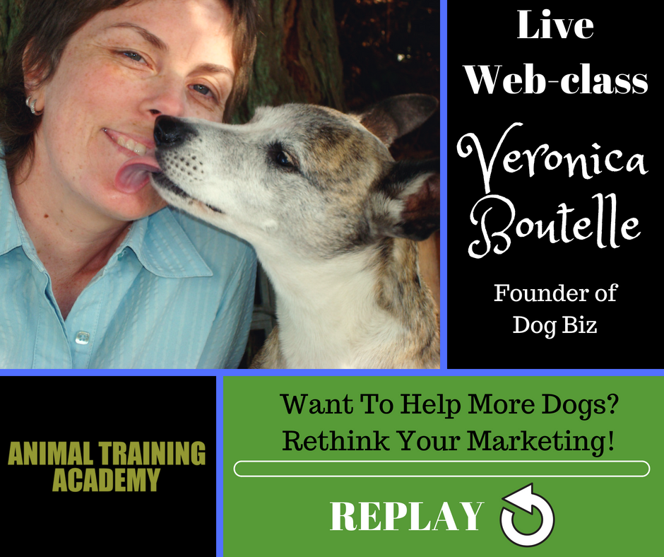 Want To Help More Dogs? Rethink Your Marketing! With special guest Veronica Boutelle from Dog Biz