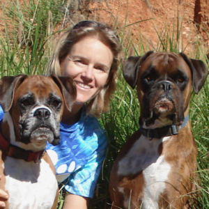 Peta Clarke; Animal Training solutions – ABC's & K9 Nose Work ….