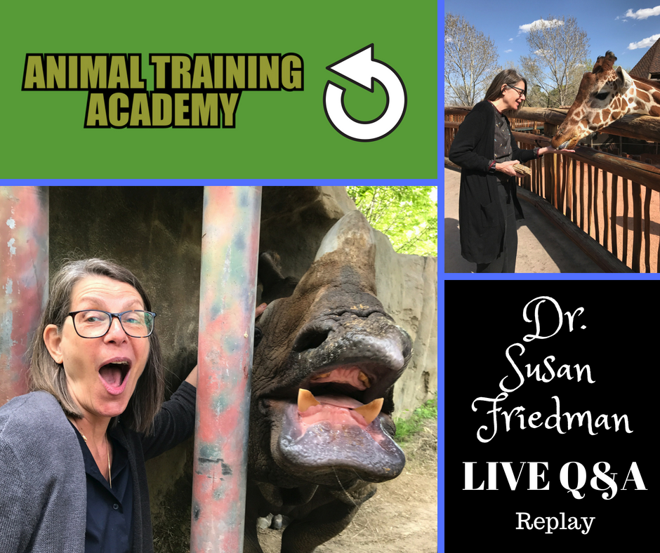 Dr. Susan Friedman LIVE Q&A #2 (Web-class replay)