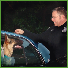 "Steve White – ProActive K9; Get ""curious"" with your animal training."