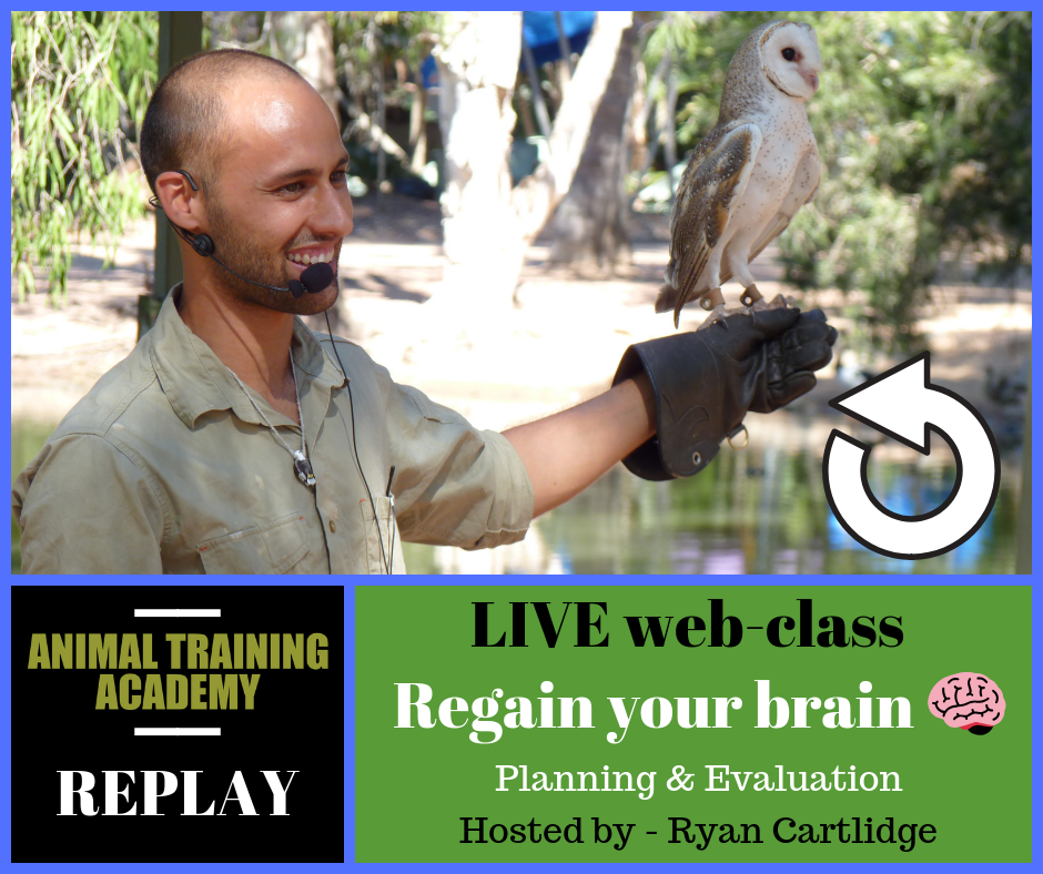 Regain your Brain – Planing & Evaluation [training plans]