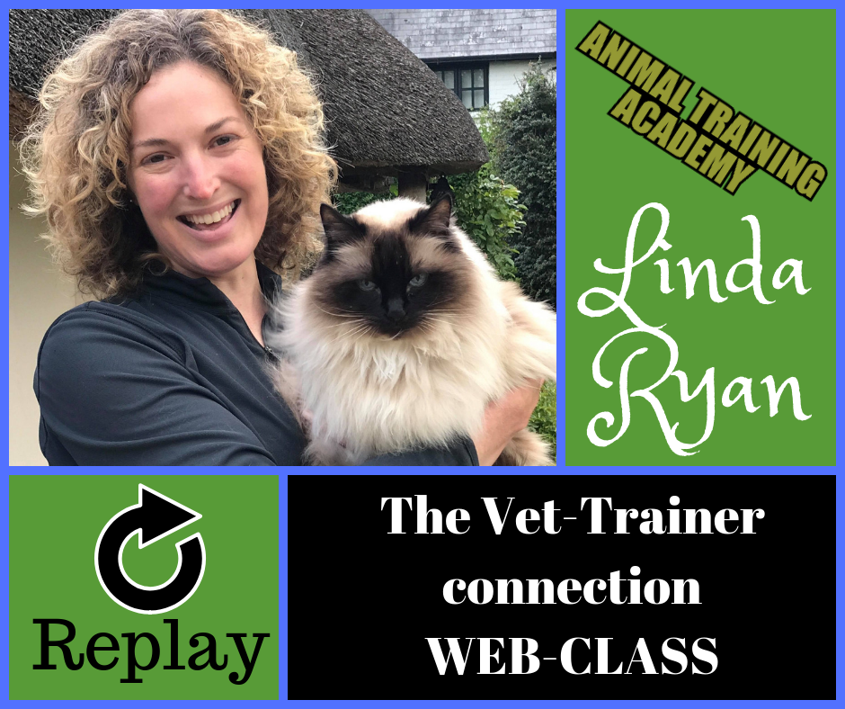 The vet-trainer connection with very special guest – Linda Ryan [LIVE web-class]