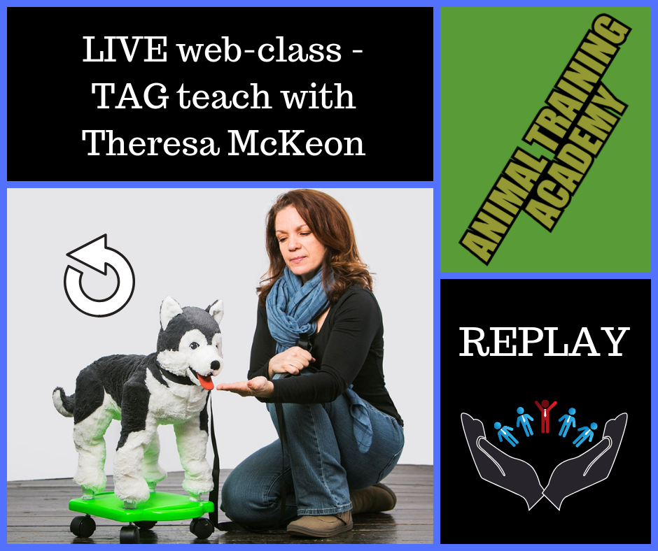 TAG Teach with Theresa McKeon