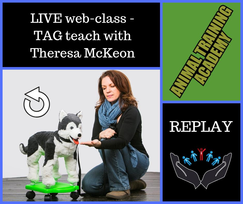 TAG Teach with Theresa McKeon