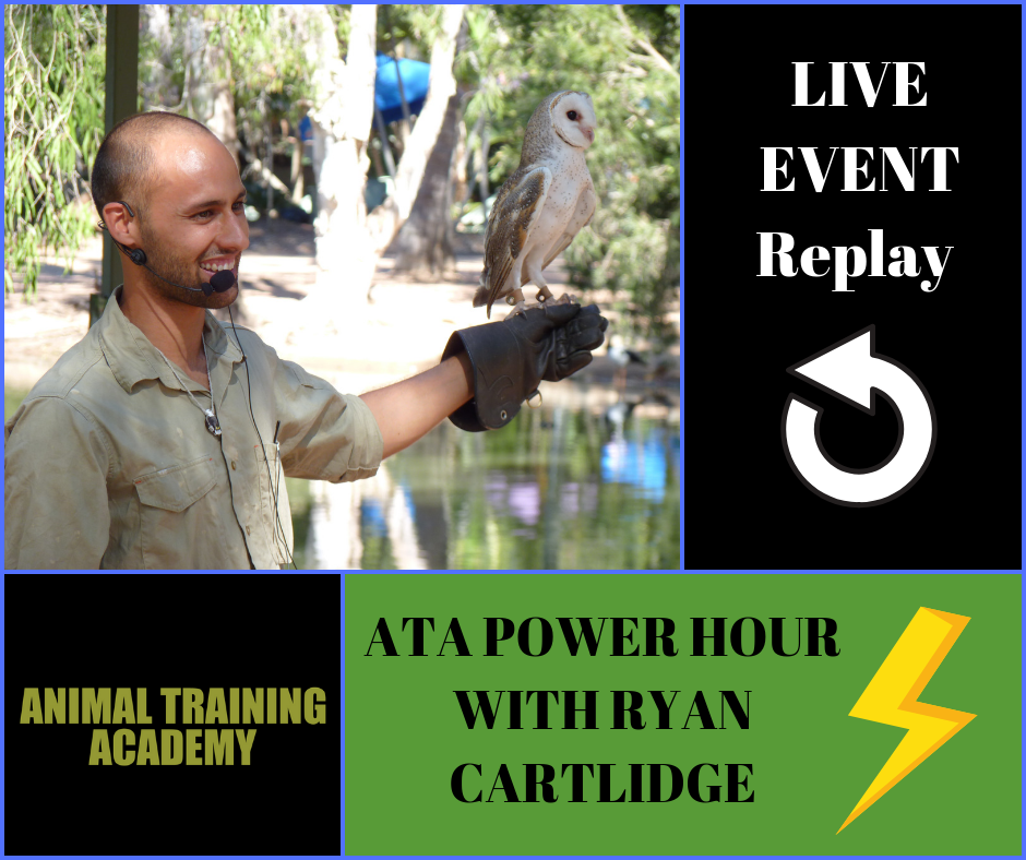 ATA power hour with Ryan Cartlidge – November 2018.