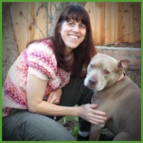 Lynn Webb – The proficient pup; Avoiding snake avoidance training…