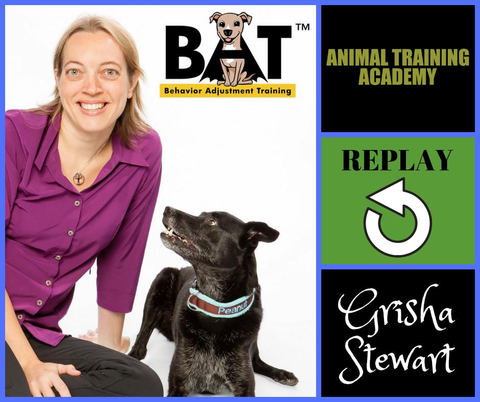 Grisha Stewart – BAT LIVE Q&A