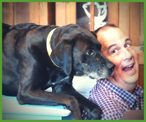 Since 2005, Ken has brought his experience as a trainer of many cognitive projects with marine mammals and primates to the dog arena.