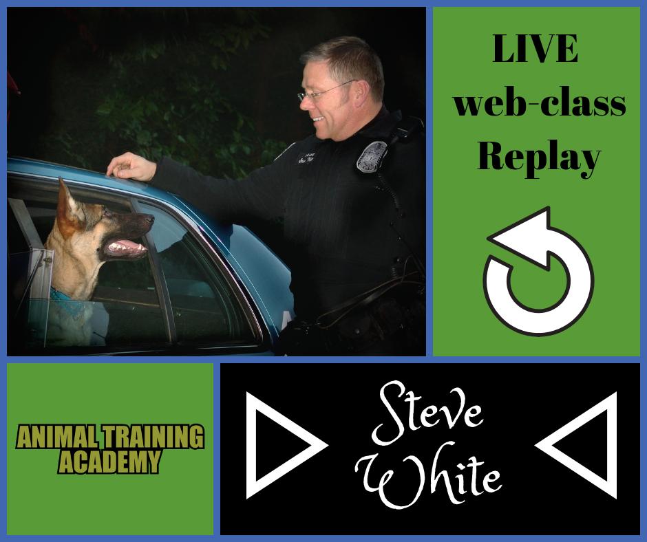 Steve White – Reading dogs scenting behaviours