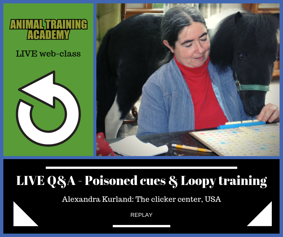 Alexandra Kurland – Loopy training LIVE Q&A with slides & video