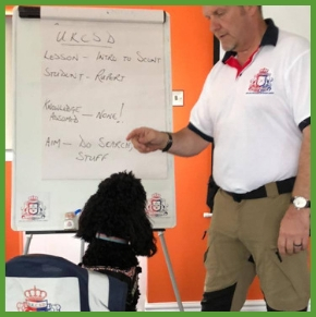 Dr. Robert Hewings – UK college of scent dogs
