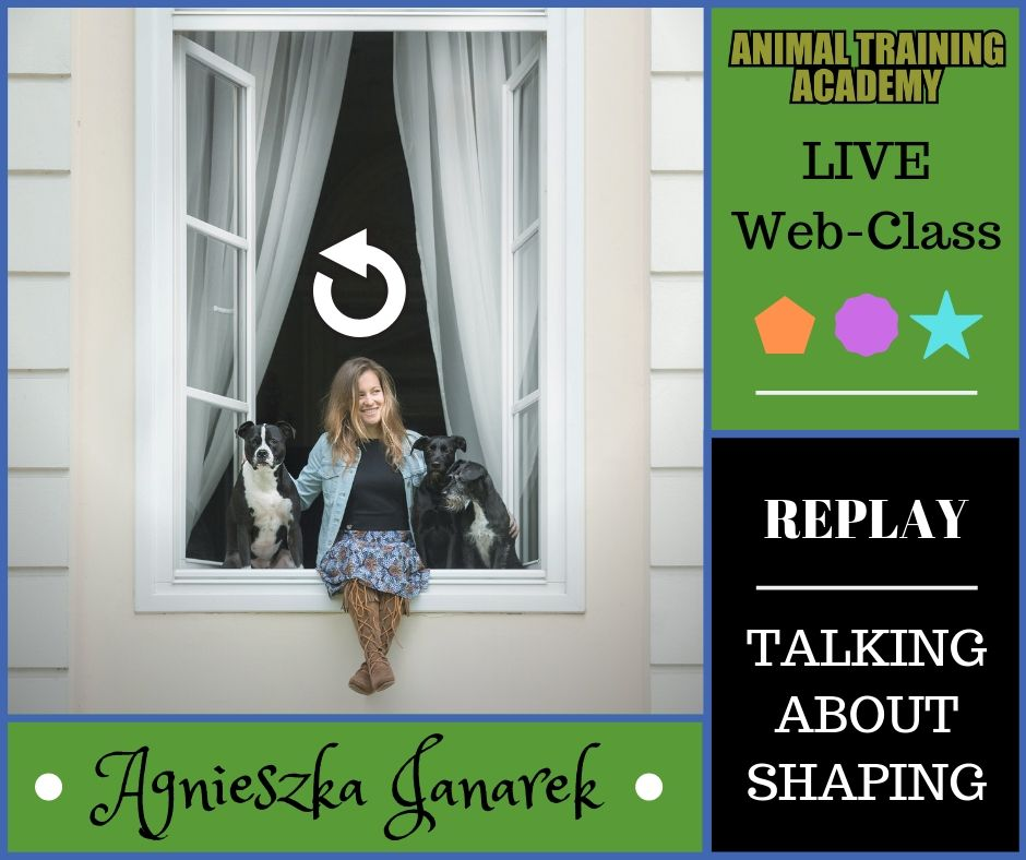 Agnieszka Janarek – Shaping, from basic to advanced