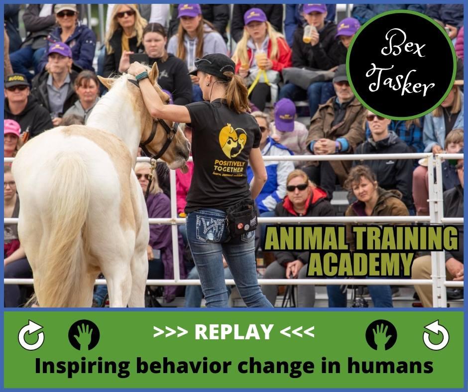 Inspiring behaviour change in humans – Bex Tasker
