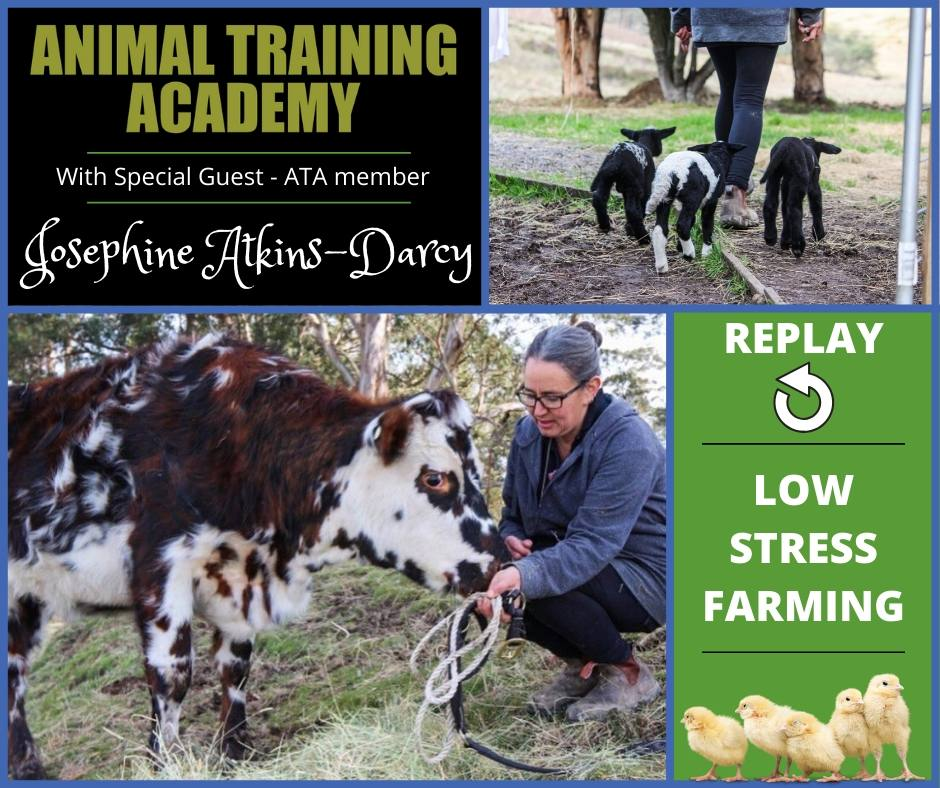 Low Stress Farming with very special guest ATA member Josephine Atkins-Darcy
