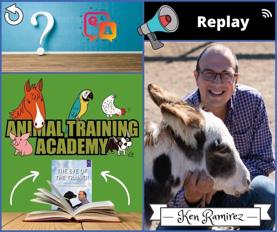 Eye of the Trainer part 1 – LIVE Q&A [Ken Ramirez]
