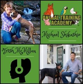 [Episode 143] – Michael Shikashio & Trish McMillan; Nobody makes good decisions whilst being strangled.