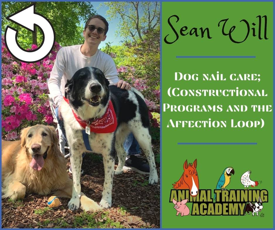 Dog nail care; (Constructional Programs and the Affection Loop) with Sean Will