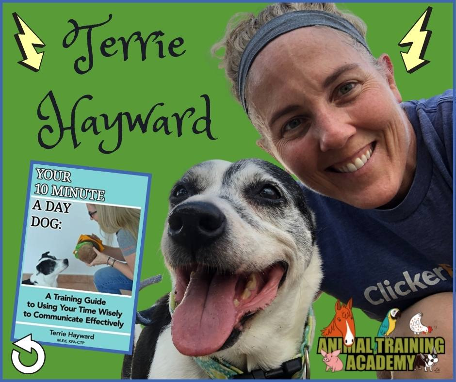 """""""Your 10 minute a day dog"""" … Terrie Hayward; KPA faculty member"""