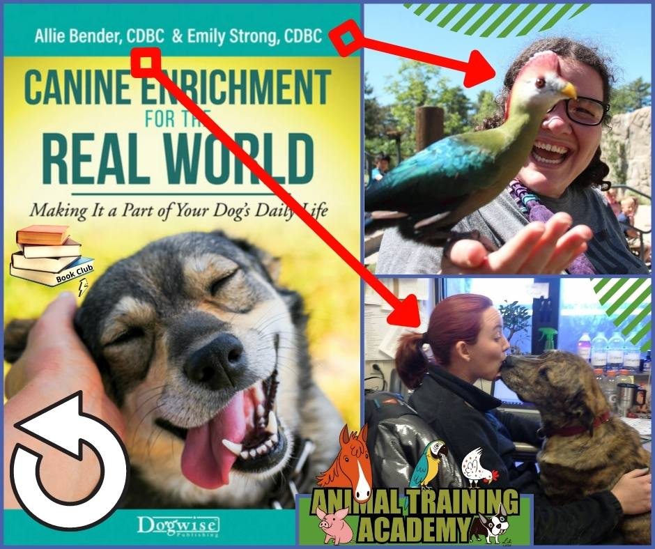 Canine Enrichment for the real world [Book Club]