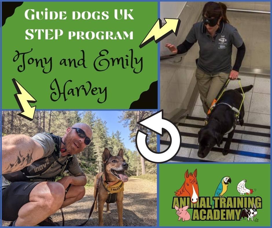 Guide dogs UK; The STEP program [Standardised Training for Excellent Partnerships]