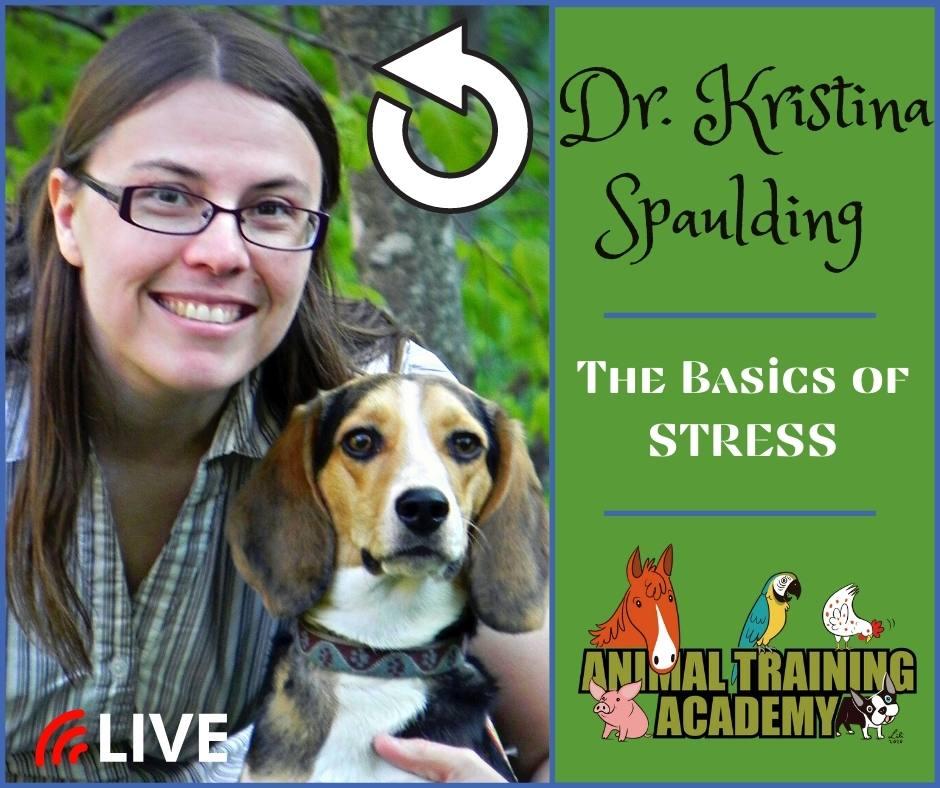 The Basics of Stress – with Dr. Kristina Spaulding
